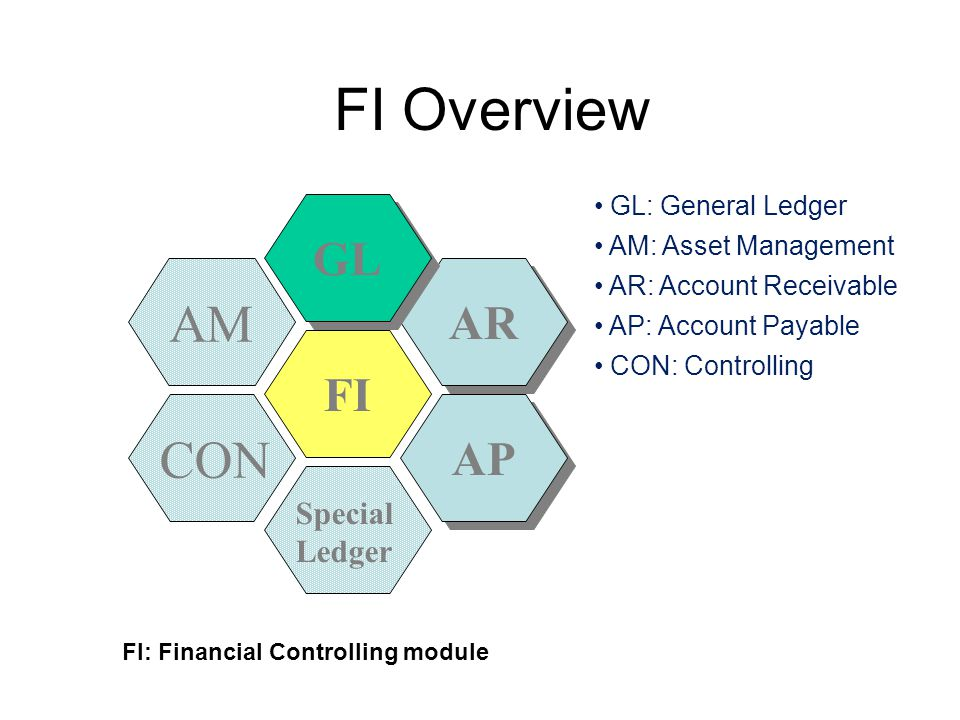 FI Overview FI AP AR AM GL CON Special Ledger FI: Financial Controlling module GL: General Ledger AM: Asset Management AR: Account Receivable AP: Acco