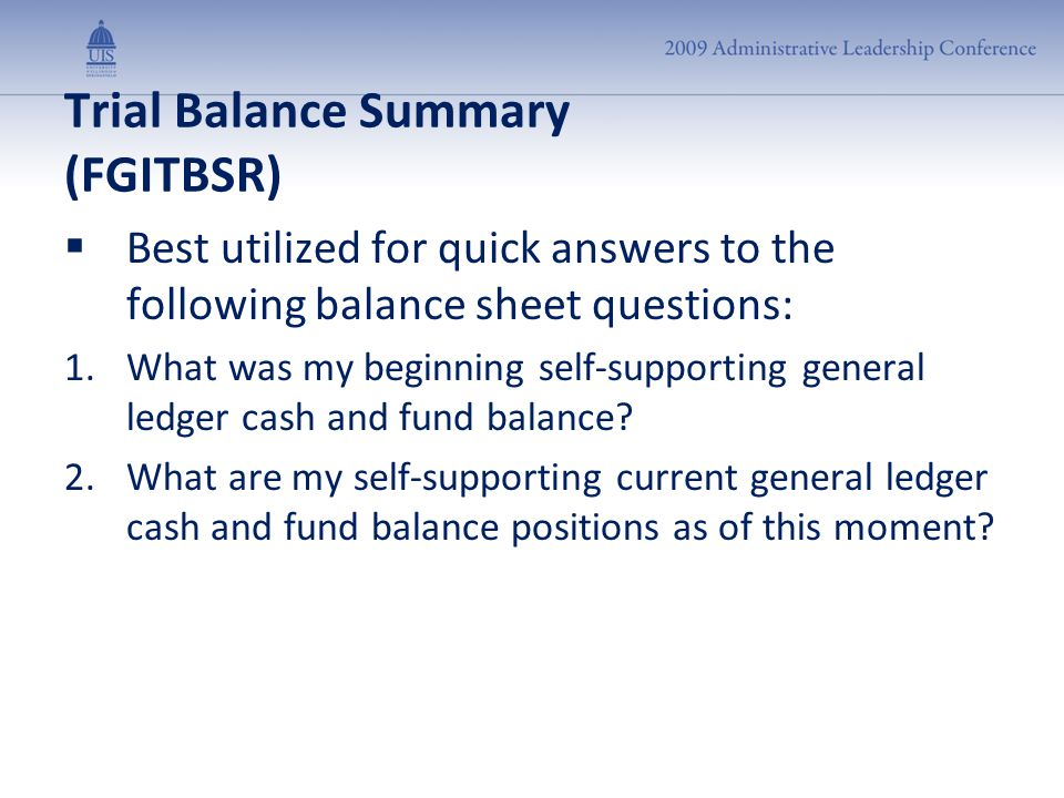 Trial Balance Summary (FGITBSR)  Best utilized for quick answers to the following balance sheet questions: 1.What was my beginning self-supporting ge