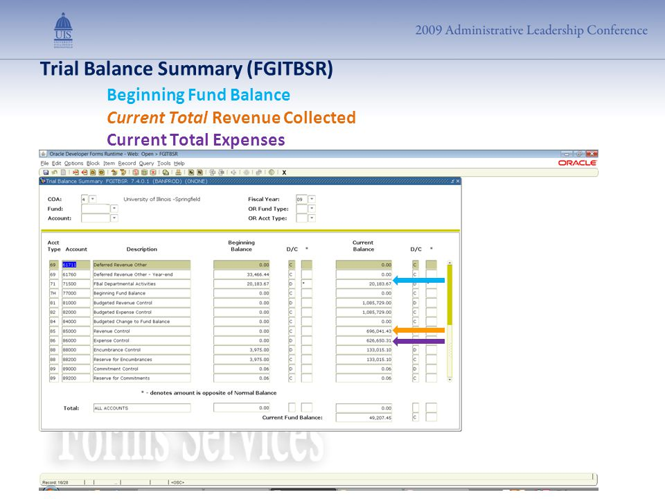 Trial Balance Summary (FGITBSR) Beginning Fund Balance Current Total Revenue Collected Current Total Expenses