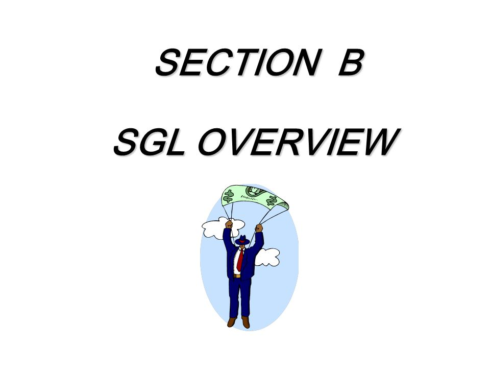 SECTION B SECTION B SGL OVERVIEW