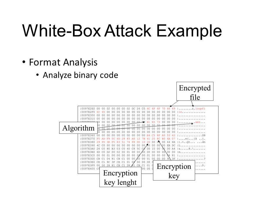 White-Box Attack Example Format Analysis Analyze binary code