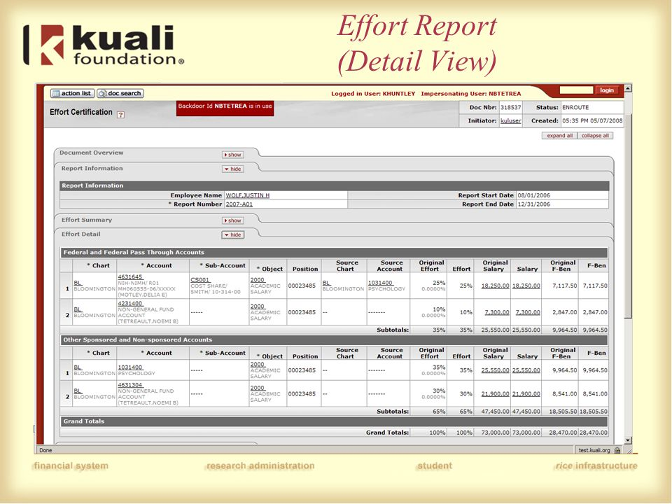 Effort Report (Detail View)