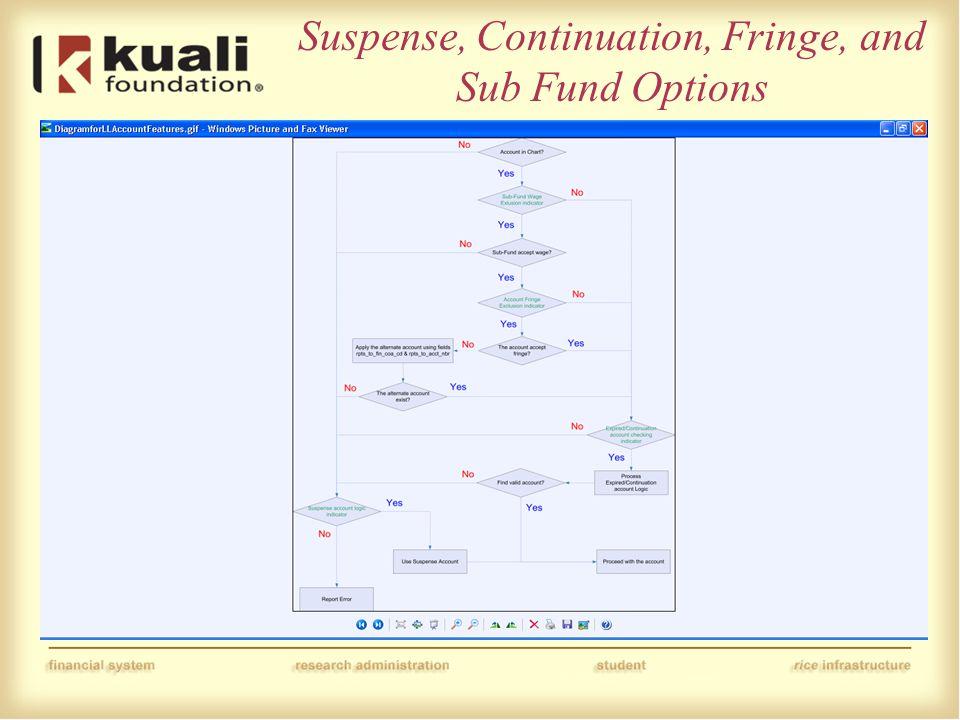 Suspense, Continuation, Fringe, and Sub Fund Options