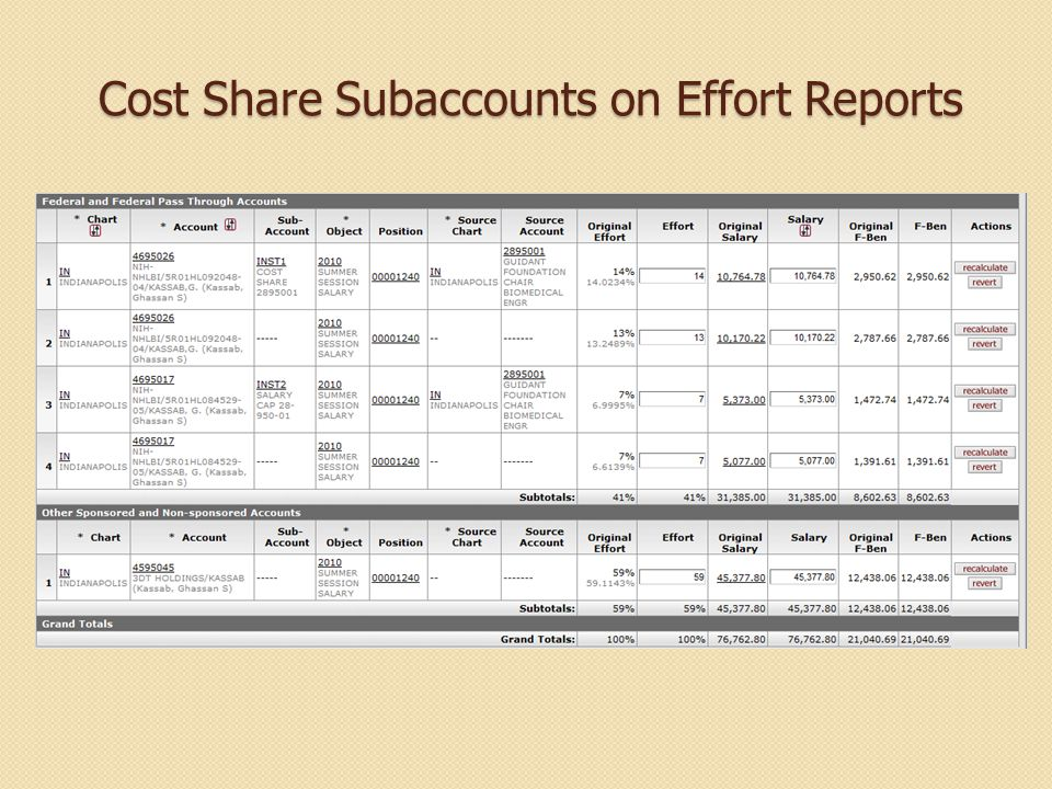 Cost Share Subaccounts on Effort Reports