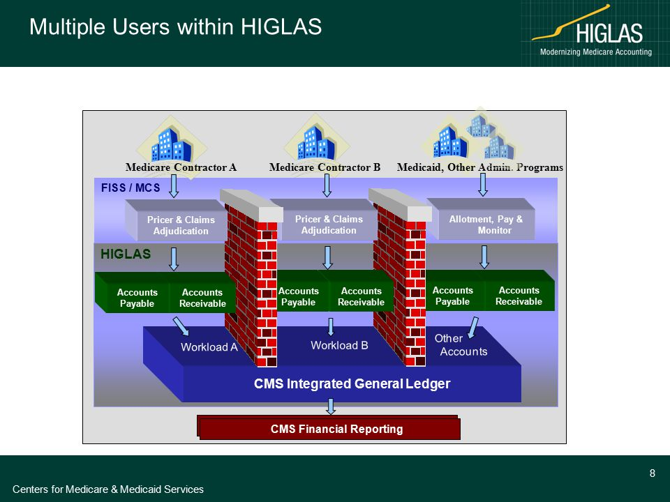 Centers for Medicare & Medicaid Services 8 Multiple Users within HIGLAS FISS / MCS HIGLAS CMS Integrated General Ledger Financial Reporting Workload B
