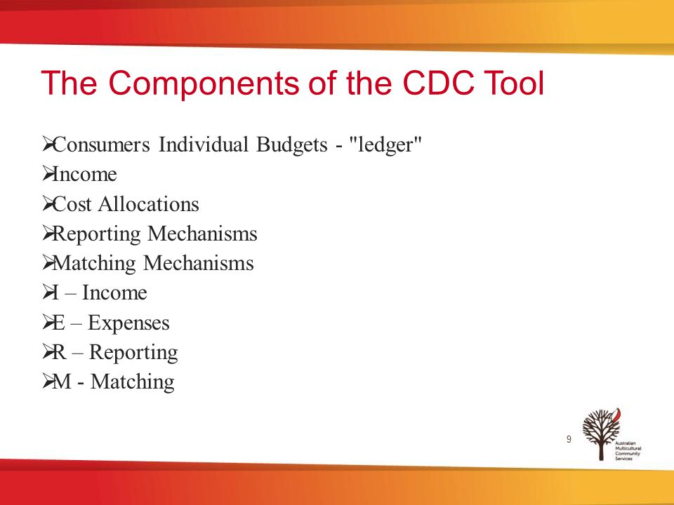 The Components of the CDC Tool  Consumers Individual Budgets - ledger  Income  Cost Allocations  Reporting Mechanisms  Matching Mechanisms  I – Income  E – Expenses  R – Reporting  M - Matching 9