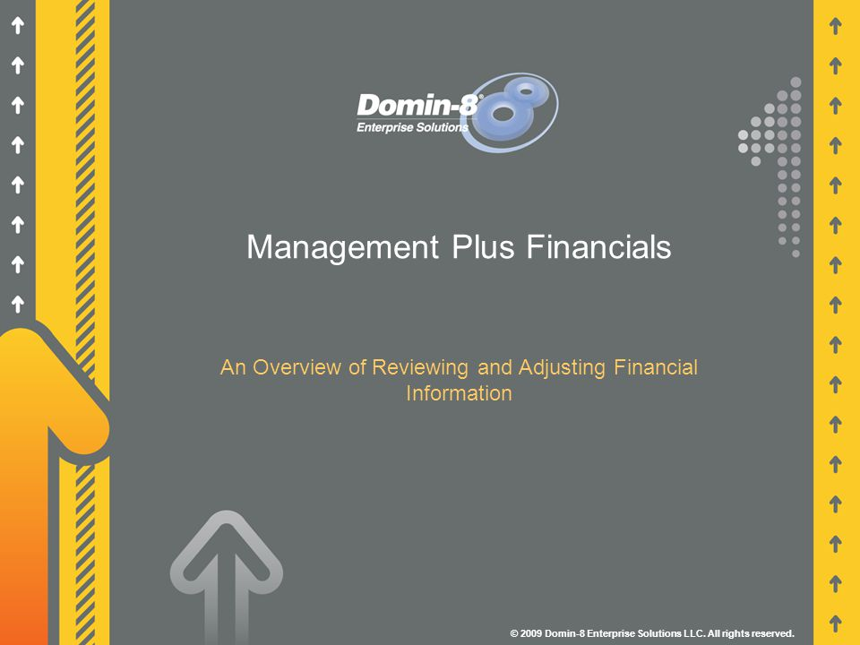 Management Plus Financials An Overview of Reviewing and Adjusting Financial Information © 2009 Domin-8 Enterprise Solutions LLC.