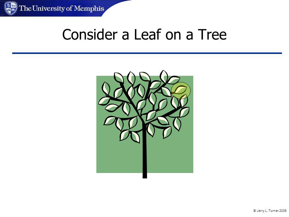 © Jerry L. Turner 2006 Consider a Leaf on a Tree