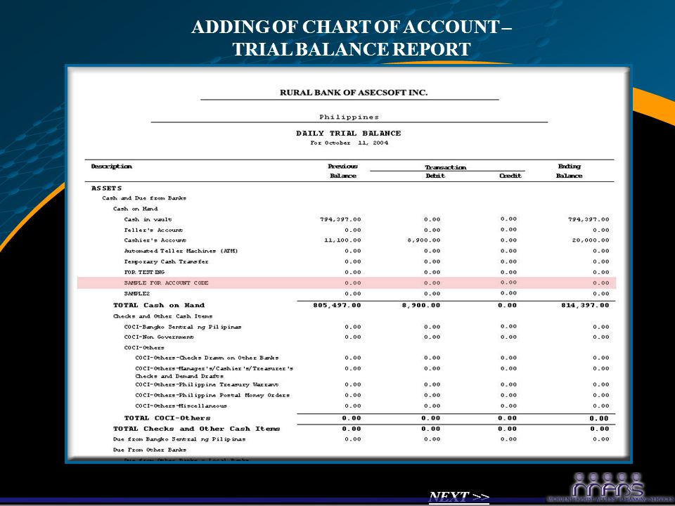 ADDING OF CHART OF ACCOUNT – TRIAL BALANCE REPORT NEXT >>