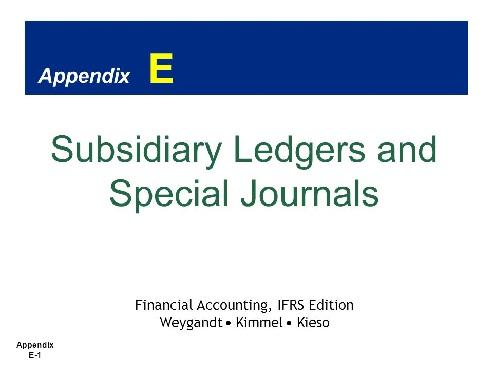 Appendix E-2 1.1.Describe the nature and purpose of a subsidiary ledger.