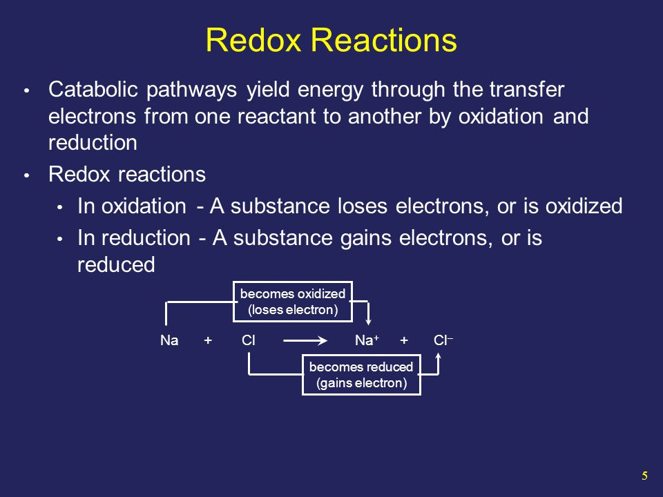 6 Oxidation of Organic Fuel Molecules During Cellular Respiration Cellular respiration provides the energy for the cell using the exergonic reaction: During cellular respiration glucose is oxidized and oxygen is reduced Glucose oxidation is accomplished in a series of steps C 6 H 12 O 6 + 6O 2 6CO 2 + 6H 2 O + Energy ~686kcal/mole becomes oxidized becomes reduced