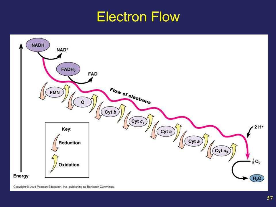 57 Electron Flow