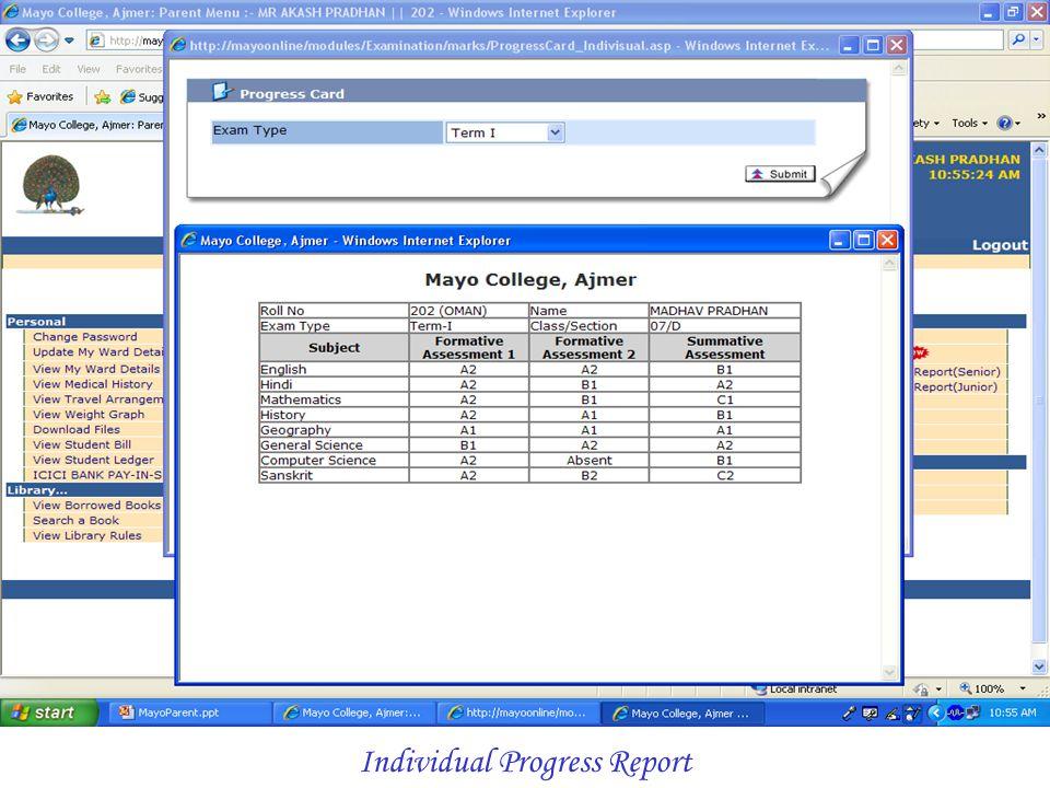 Individual Progress Report