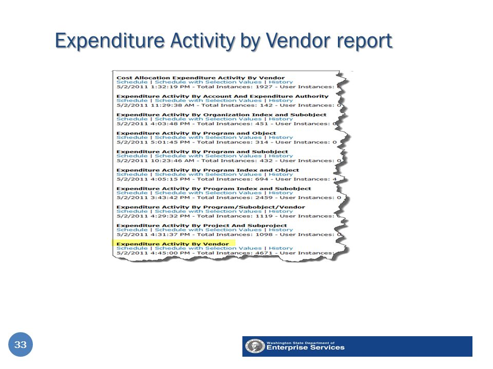 Expenditure Activity by Vendor report 33