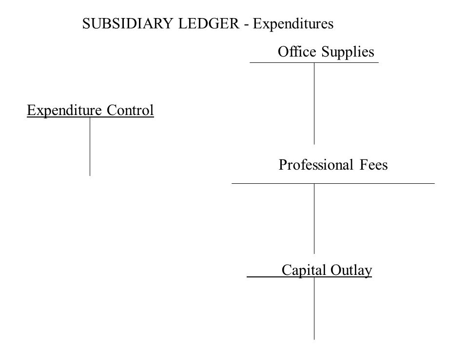 SUBSIDIARY LEDGER - Expenditures Office Supplies Professional Fees Expenditure Control Capital Outlay