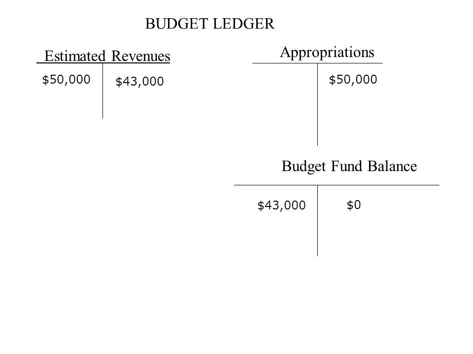 BUDGET LEDGER Estimated Revenues Appropriations Budget Fund Balance $50,000 $0 $43,000