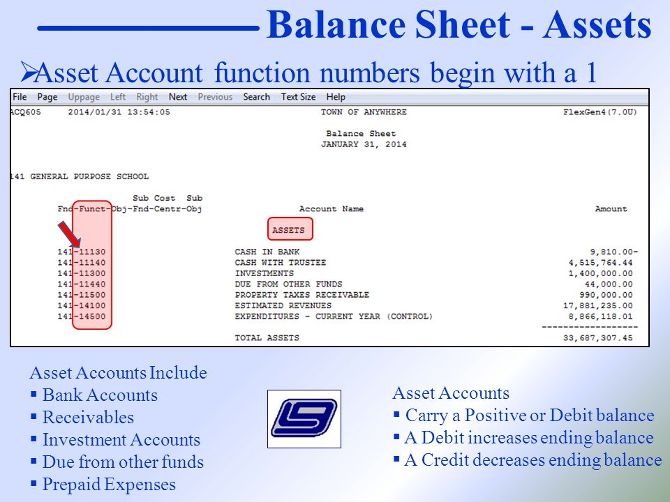 Balance Sheet - Assets Asset Accounts Include  Bank Accounts  Receivables  Investment Accounts  Due from other funds  Prepaid Expenses Asset Acco