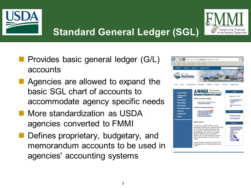 Transforming Financials at the People's Department FMMI Chart of Accounts  FMMI incorporates the United States Standard General Ledger (USSGL) and uses the USSGL s Chart of Accounts:  G/L account numbers are assigned within the predefined ranges detailed above 14