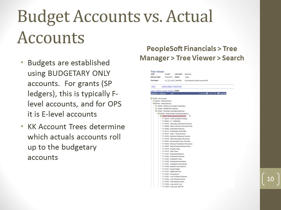 Budget Accounts vs. Actual Accounts Budgets are established using BUDGETARY ONLY accounts.