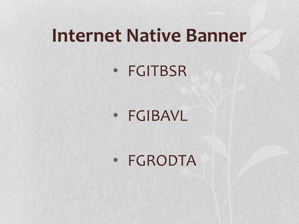 FGITBSR FGIBAVL FGRODTA Internet Native Banner