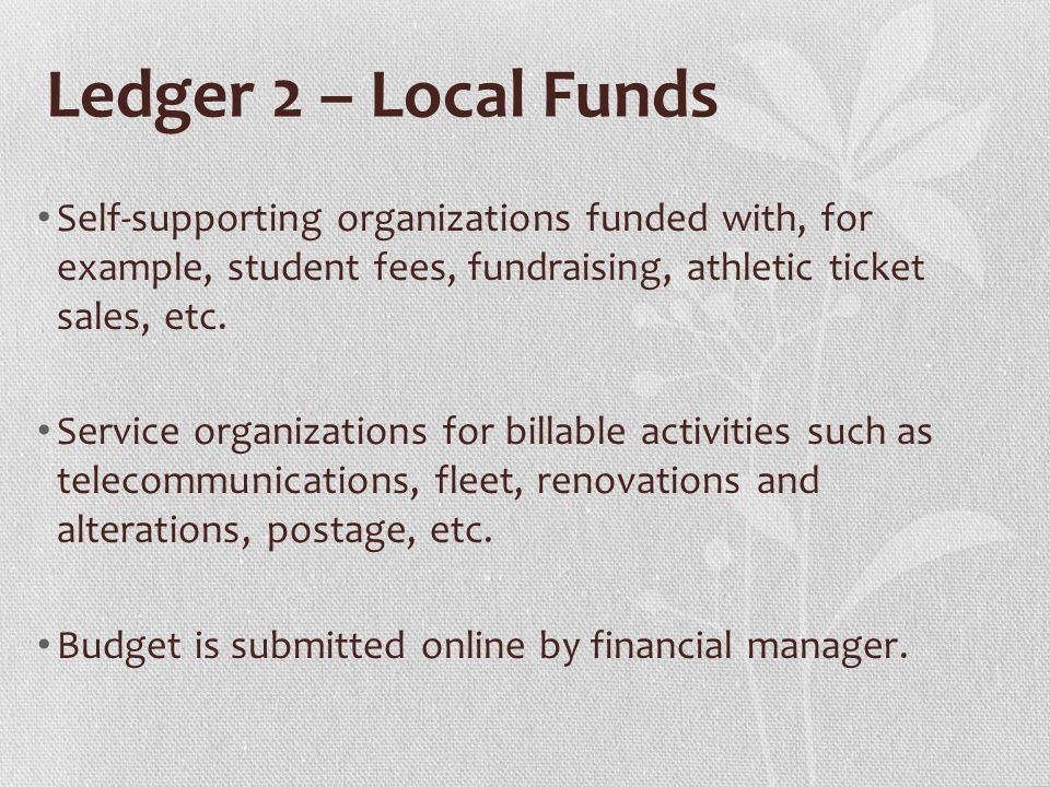 Ledger 2 – Local Funds Self-supporting organizations funded with, for example, student fees, fundraising, athletic ticket sales, etc.