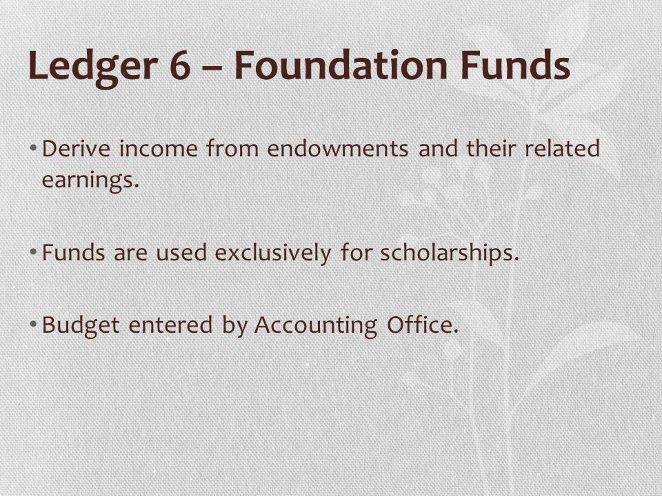 Ledger 6 – Foundation Funds Derive income from endowments and their related earnings.