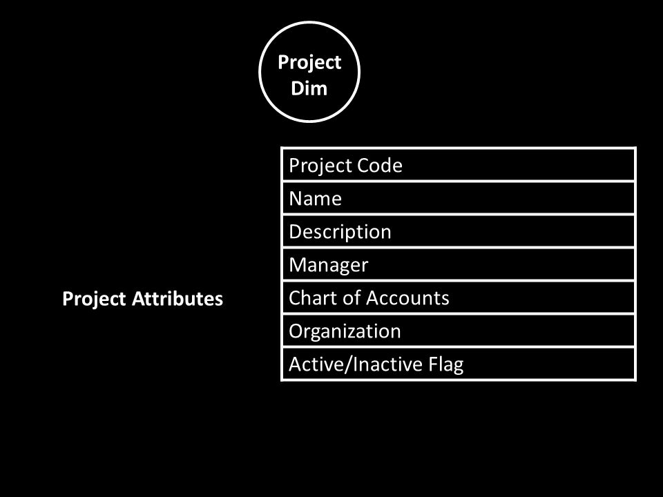 Project Dim Project Code Name Description Manager Chart of Accounts Organization Active/Inactive Flag Project Attributes