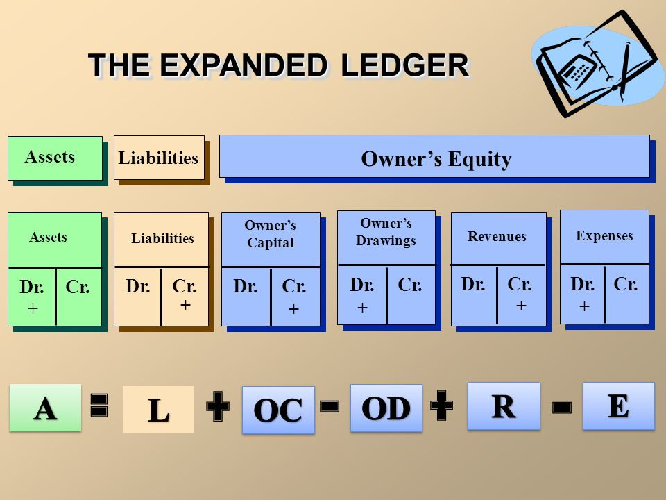 Equity Section Summary  There are four types of accounts in the equity section: 1.Capital 2.Revenue 3.Expenses 4.