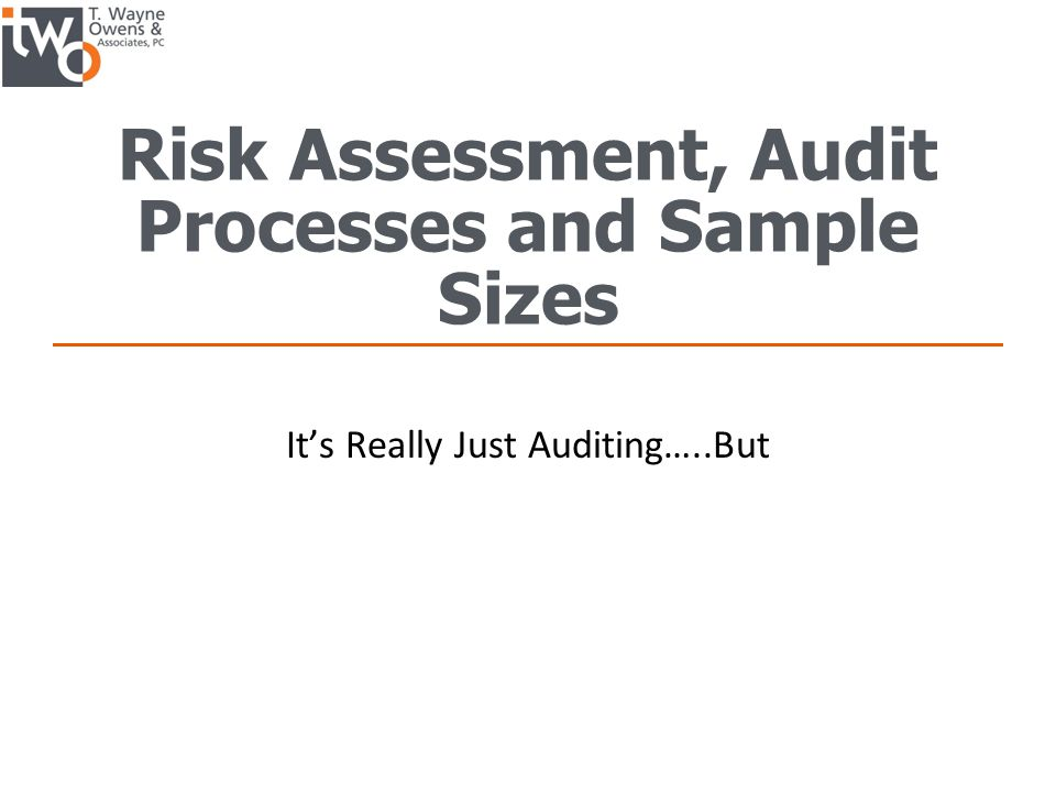 Risk Assessment, Audit Processes and Sample Sizes It's Really Just Auditing…..But