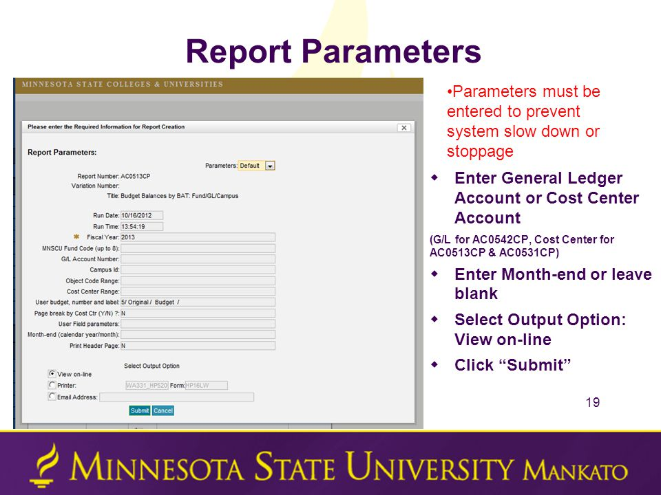 Report Parameters  Enter General Ledger Account or Cost Center Account (G/L for AC0542CP, Cost Center for AC0513CP & AC0531CP)  Enter Month-end or leave blank  Select Output Option: View on-line  Click Submit 19 Parameters must be entered to prevent system slow down or stoppage