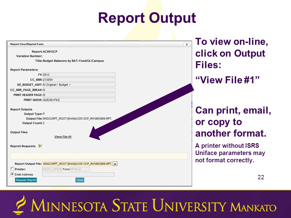 Report Output To view on-line, click on Output Files: View File #1 Can print, email, or copy to another format.