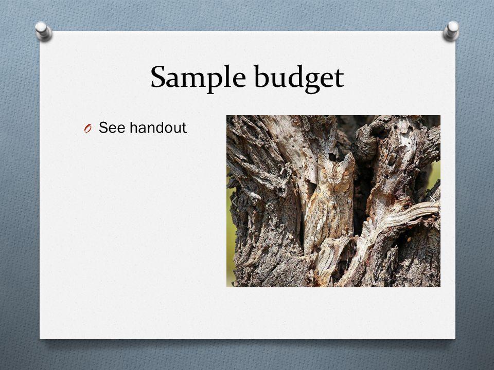 Sample budget O See handout