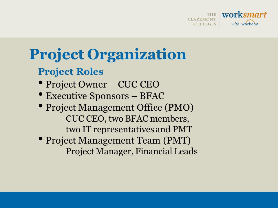 Project Roles Project Owner – CUC CEO Executive Sponsors – BFAC Project Management Office (PMO) CUC CEO, two BFAC members, two IT representatives and