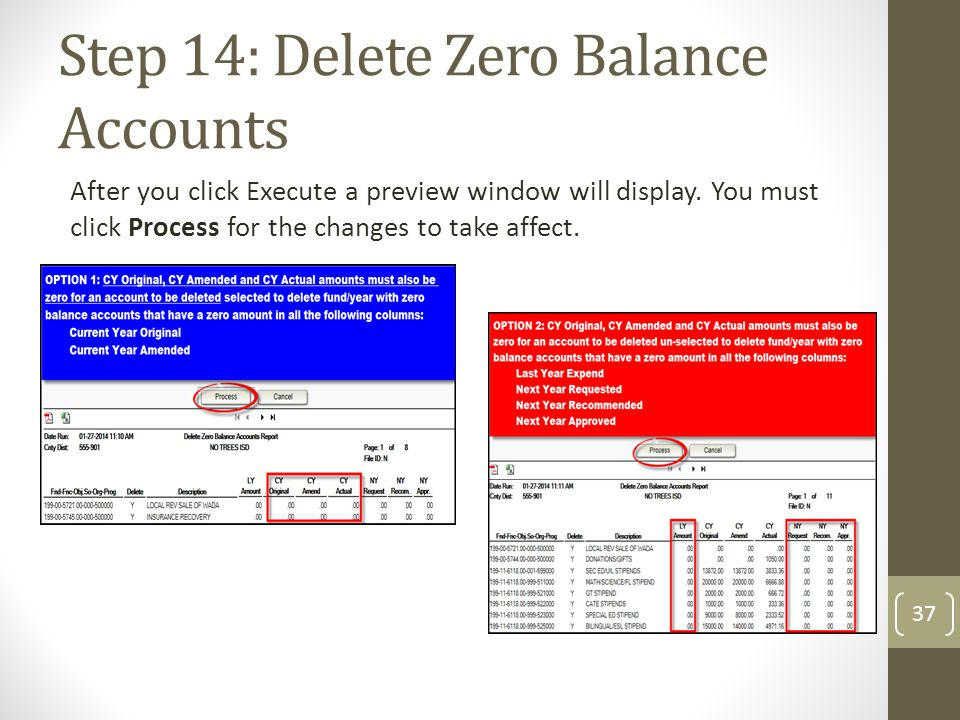 Step 14: Delete Zero Balance Accounts After you click Execute a preview window will display. You must click Process for the changes to take affect. 37
