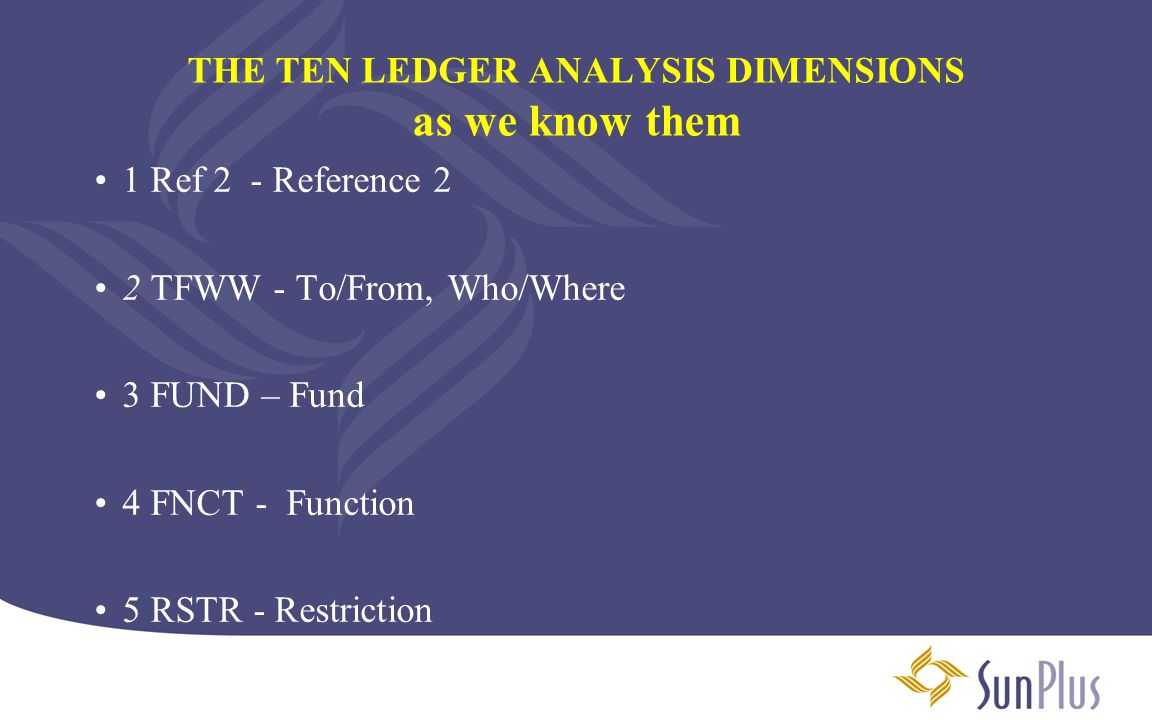 LEDGER ANALYSIS 5 – RSTR RESTRICTION Dimension The restriction dimension has been streamlined.