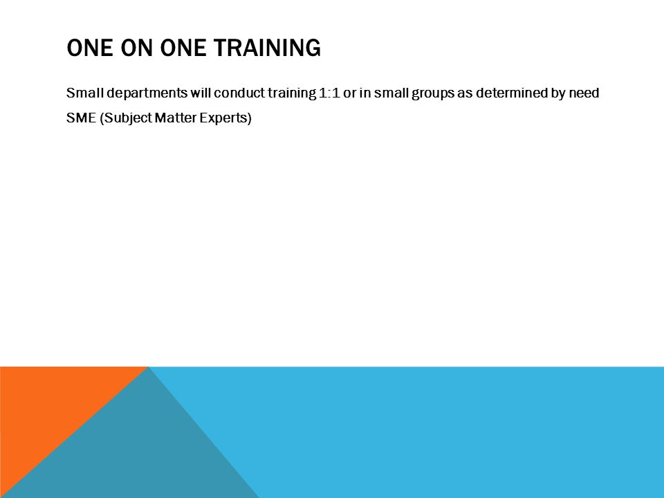 ONE ON ONE TRAINING Small departments will conduct training 1:1 or in small groups as determined by need SME (Subject Matter Experts)