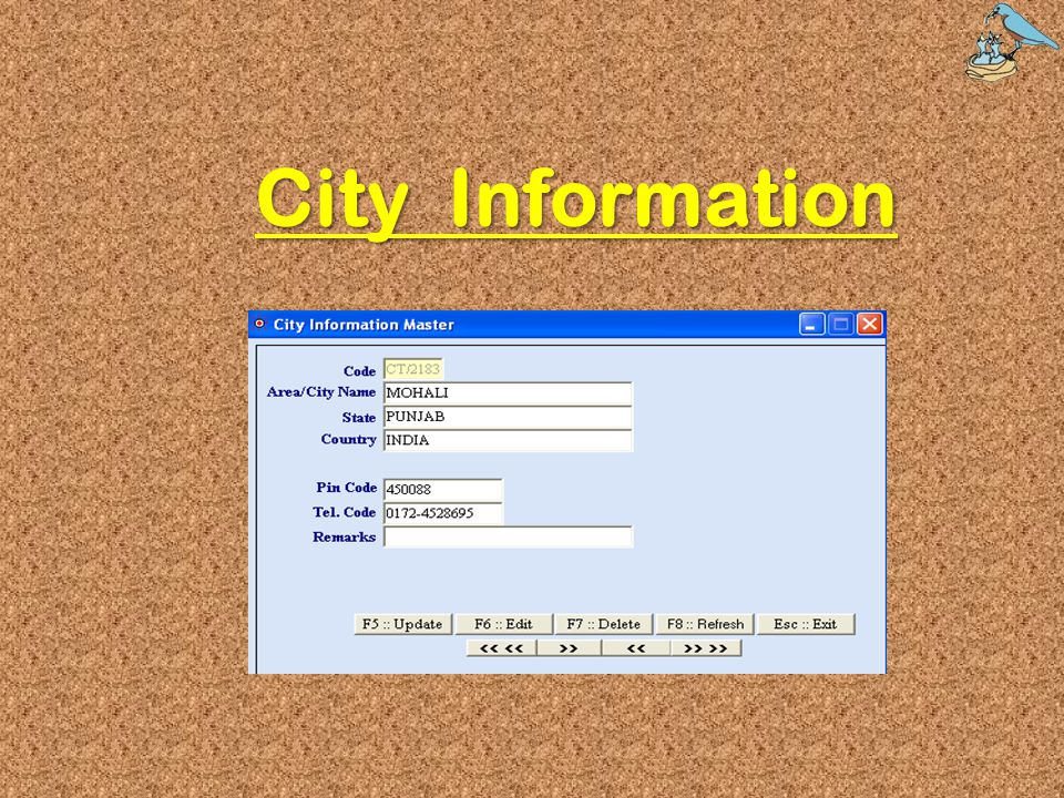City Information