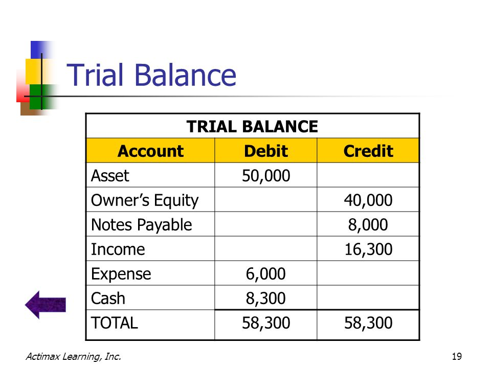 Actimax Learning, Inc.19 Trial Balance TRIAL BALANCE AccountDebitCredit Asset50,000 Owner's Equity40,000 Notes Payable8,000 Income16,300 Expense6,000 Cash8,300 TOTAL58,300