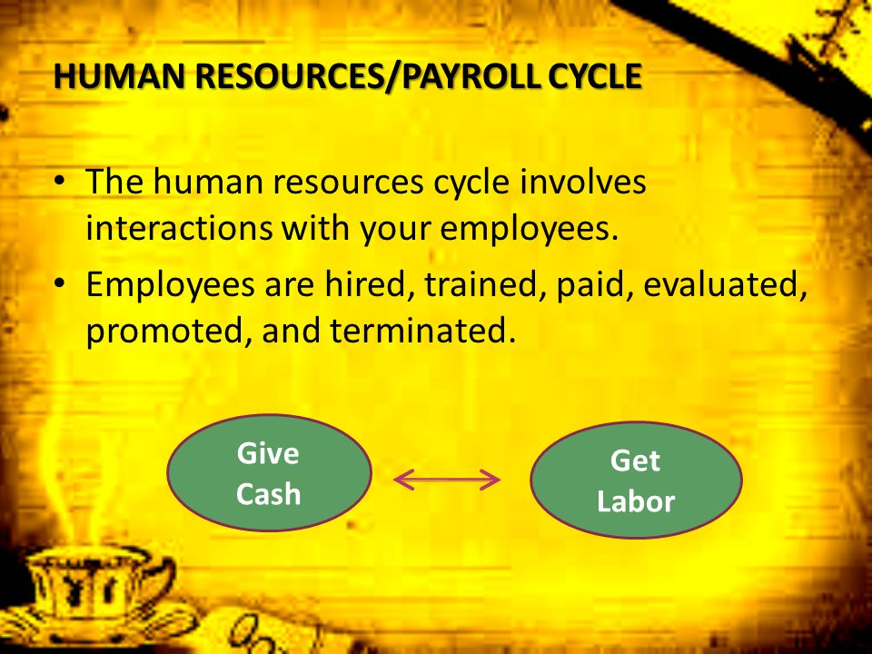 HUMAN RESOURCES/PAYROLL CYCLE The human resources cycle involves interactions with your employees. Employees are hired, trained, paid, evaluated, prom