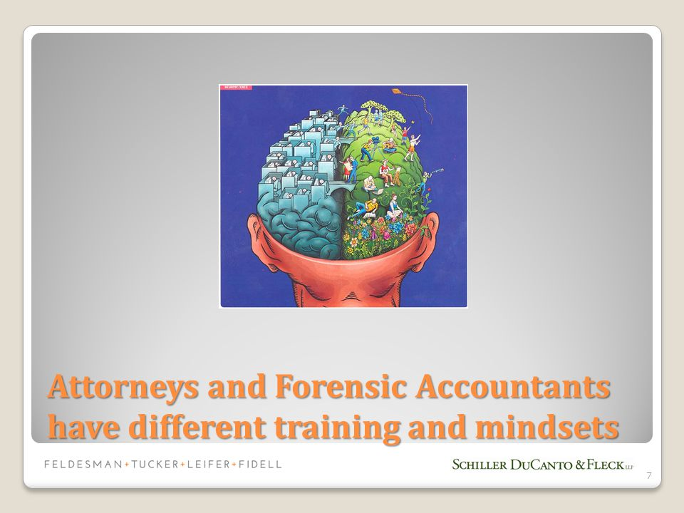 Attorneys and Forensic Accountants have different training and mindsets 7