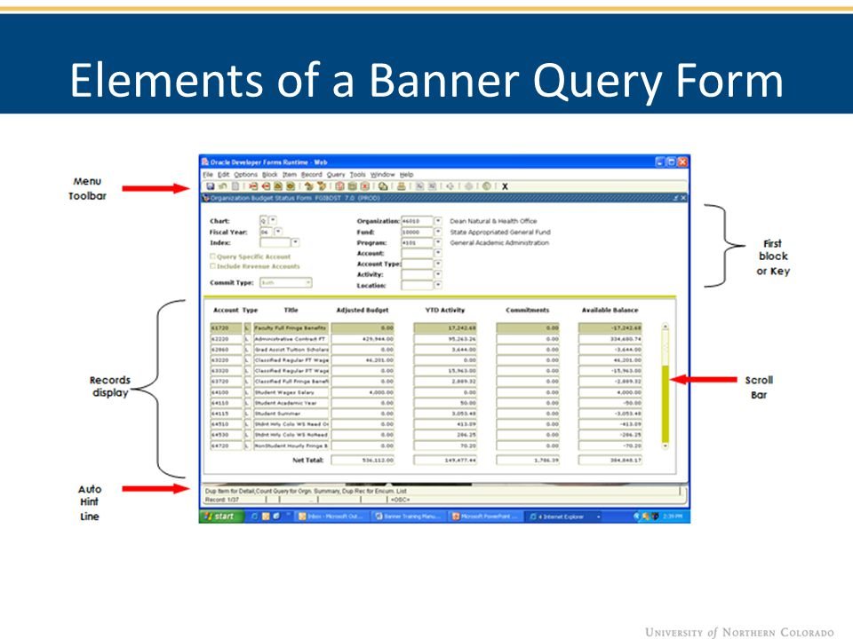 Elements of a Banner Query Form