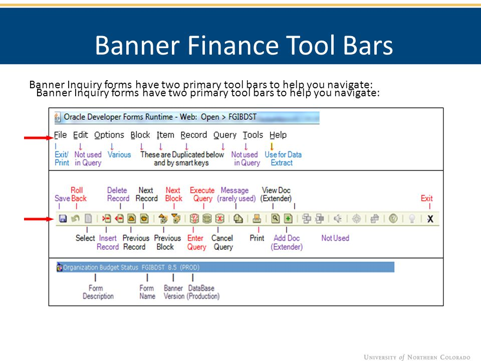 Banner Finance Tool Bars Banner Inquiry forms have two primary tool bars to help you navigate: Elements of a Banner Query Form Banner Inquiry forms ha