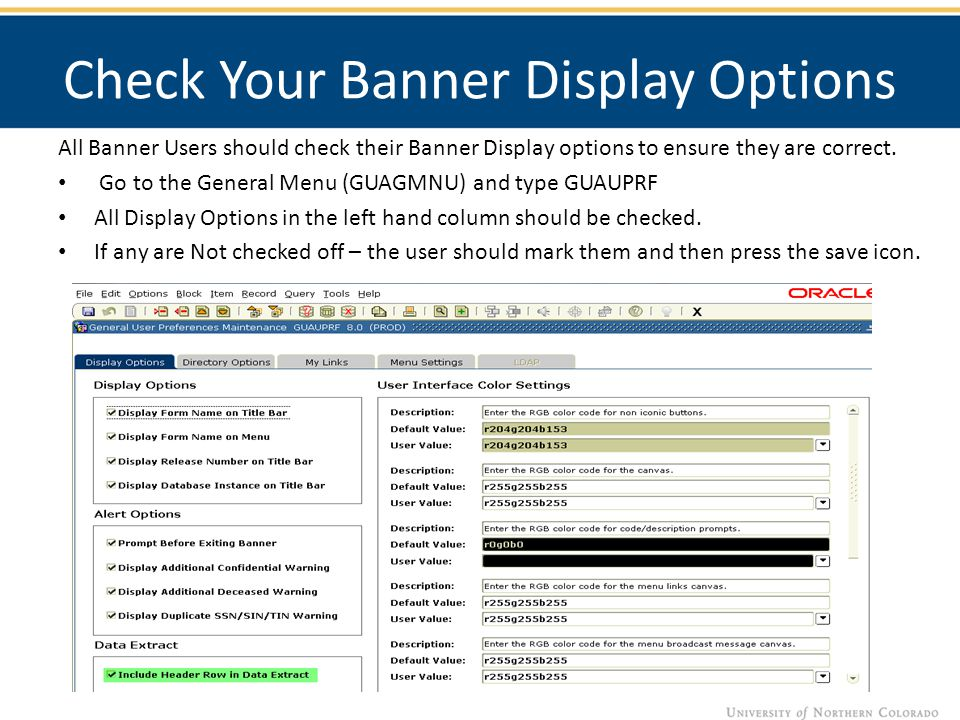 Check Your Banner Display Options All Banner Users should check their Banner Display options to ensure they are correct.