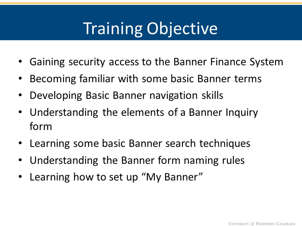 Training Objective Gaining security access to the Banner Finance System Becoming familiar with some basic Banner terms Developing Basic Banner navigat
