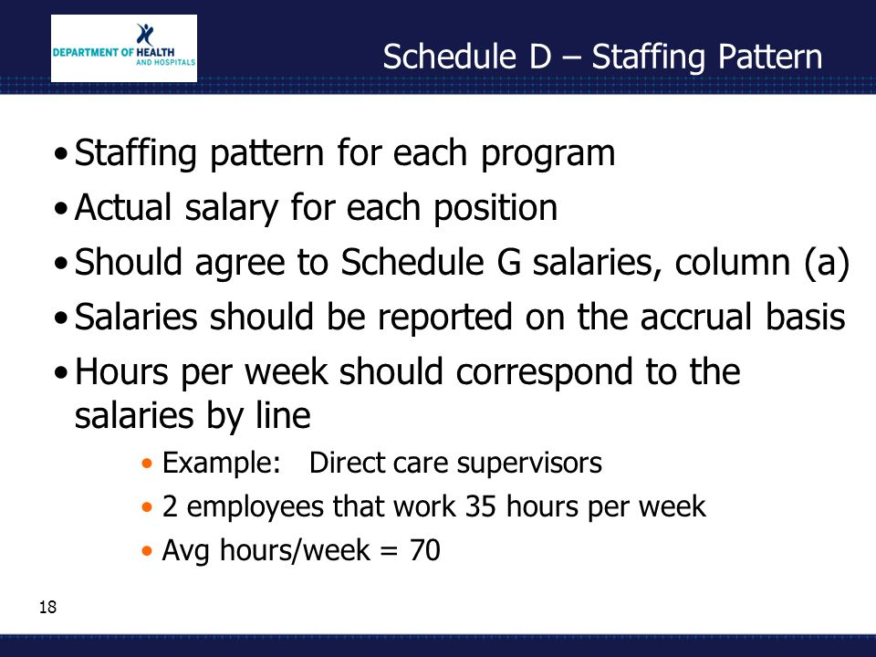 18 Schedule D – Staffing Pattern Staffing pattern for each program Actual salary for each position Should agree to Schedule G salaries, column (a) Sal