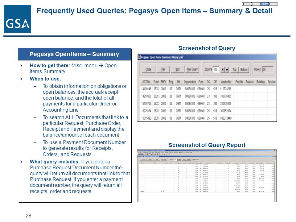 28 Frequently Used Queries: Pegasys Open Items – Summary & Detail Pegasys Open Items – Summary  How to get there: Misc.