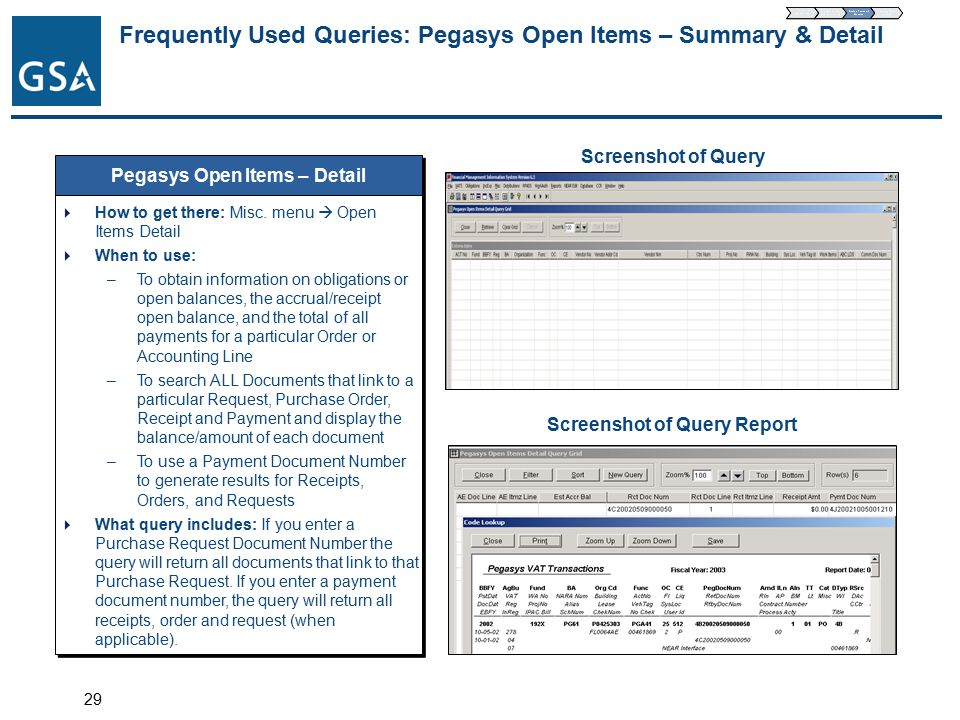 29 Frequently Used Queries: Pegasys Open Items – Summary & Detail Pegasys Open Items – Detail  How to get there: Misc.