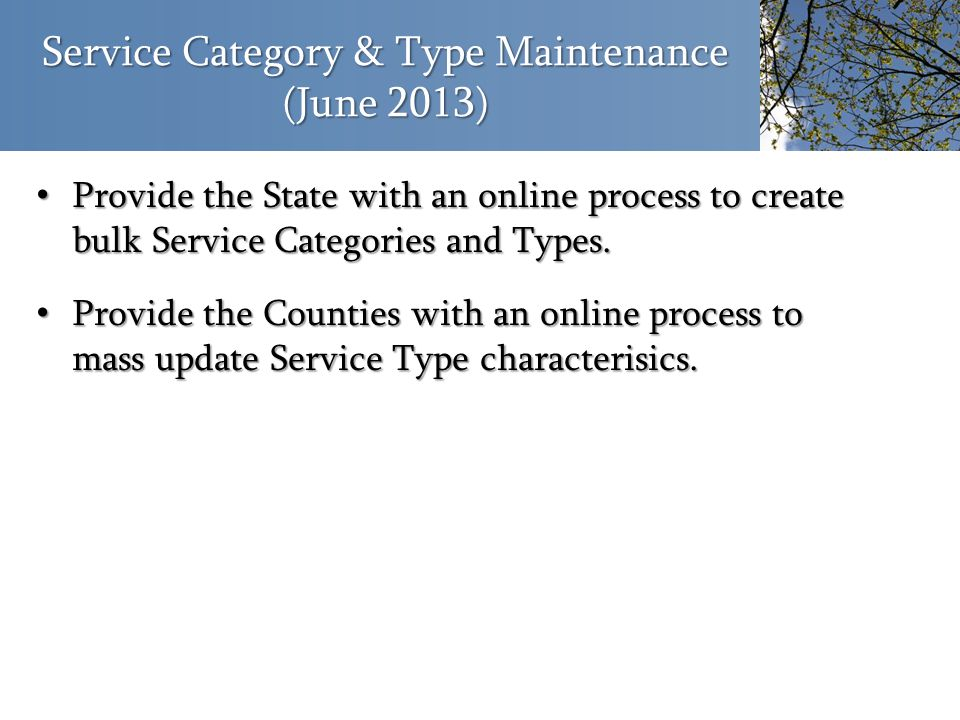 Service Category & Type Maintenance (June 2013) Provide the State with an online process to create bulk Service Categories and Types. Provide the Stat