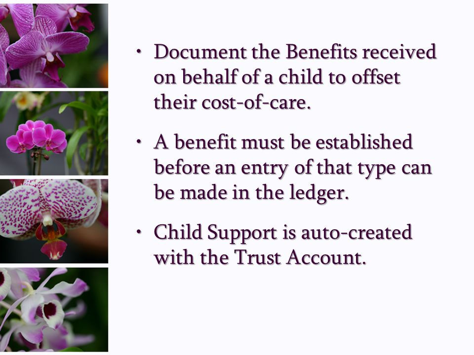 Document the Benefits received on behalf of a child to offset their cost-of-care.Document the Benefits received on behalf of a child to offset their c