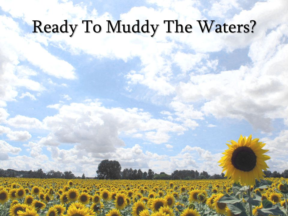 Ready To Muddy The Waters?